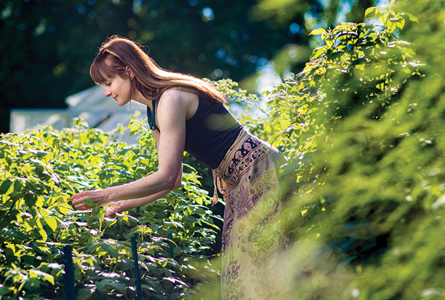 Amber Olson looks at her homegrown fruits and vegetables in her Maple Grove garden.