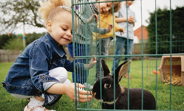 Girl petting a bunny