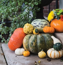 A pile of pumpkins sits on a front step.