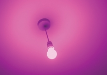 A purple lightbulb, which represents shining a light on domestic violence for Domestic Violence Awareness Month