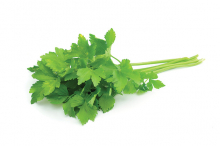 Fresh herbs, one of the key ingredients of Vietnamese cuisine